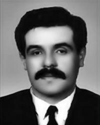 Metin Tokdemir