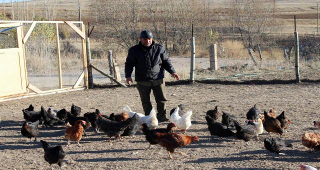 Emekli oldu, 'boş durmak bana göre değil' diyerek tavuk çiftliği kurdu