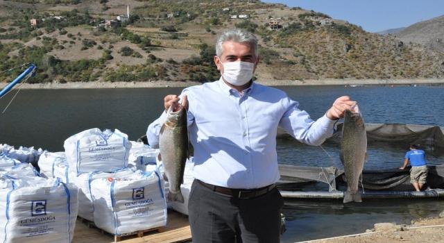Baraj Göllerinde Balık Hasadı Başladı