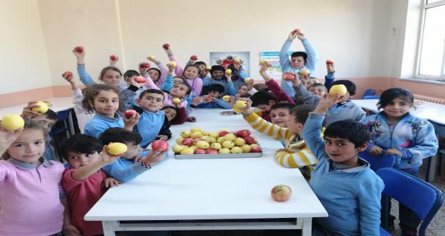 Sağlık için günde bir elma ye