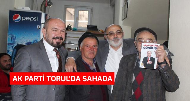 AK Parti Torul'da Sahada