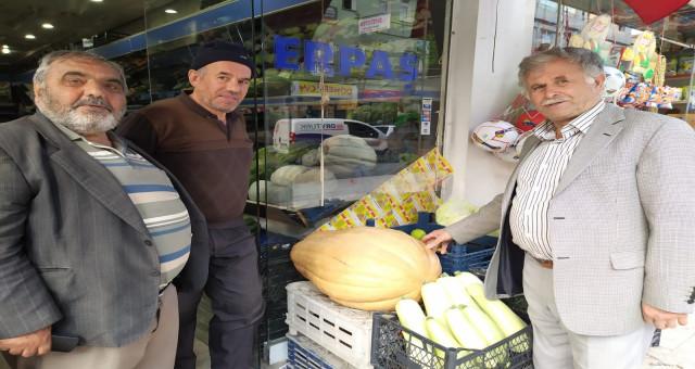Bu bal kabağı tam 33,8 kilogram