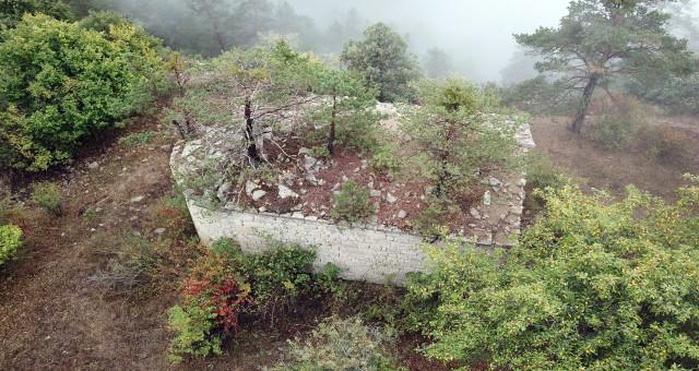 Tarihi kilisenin çatısında büyüyen ağaçlar görenlerin dikkatini çekiyor
