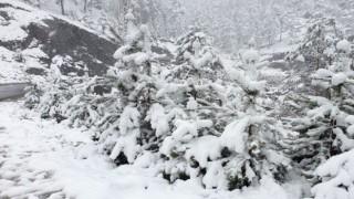 Yüksek kesimlerde kar kalınlığı 10 santimetreye ulaştı
