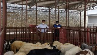 Hayvan pazarında tedbirler üst seviyeye çıkarıldı