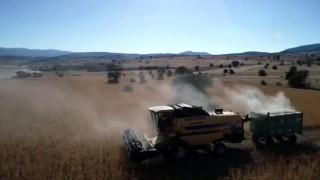 30 yıldır işlenmeyen araziler aspirle ekonomiye kazandırıldı