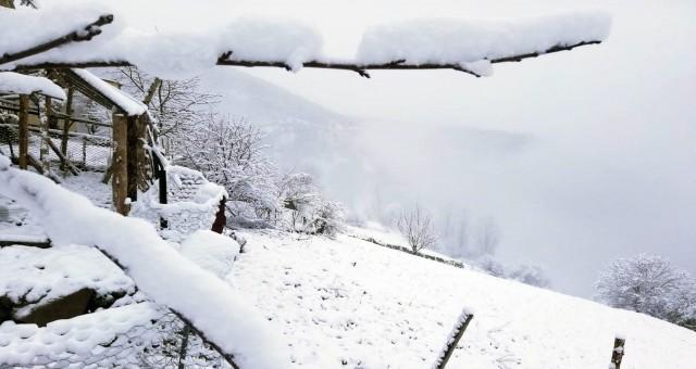 Gümüşhane'nin yükseklerinde kar yağışı etkili oldu